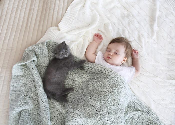 Consejos para que convivan los bebés con las mascotas